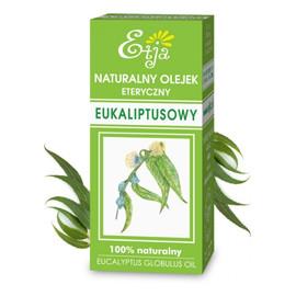 Olejek eteryczny eukaliptusowy