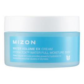 Water Volume Ex Cream Nawilżający krem do twarzy