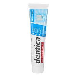 pasta do zębów Dental Protection