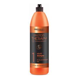 Protein Therapy Keratin Complex Keratyna 1 Shampoo For Dry And Damaged Hair Szampon Odbudowujący Kreatyna & Ekstrakt Z Aloesu