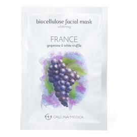 France Whitening Biocellulose Facial Mask wybielająca maseczka z biocelulozy Grapevine & White Truffle