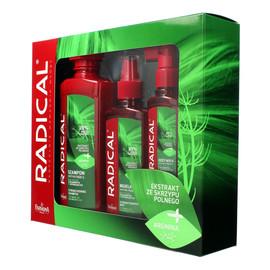 Zestaw prezentowy Radical (szampon 400ml+mgiełka 200ml+odżywka 100ml)