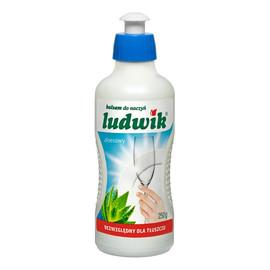 Balsam do mycia naczyń aloesowy