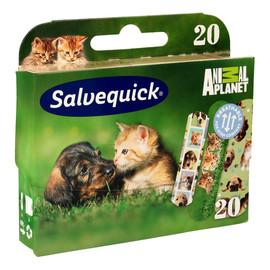 Plastry Animal Planet dla dzieci 1op-20szt