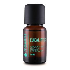 Organiczny olejek eteryczny z eukaliptusa